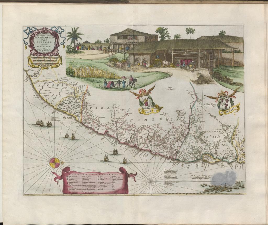 Grooten atlas, oft, Werelt-beschryving, in welcke 't aertryck, de zee, en hemel, wordt vertoont en beschreven deel 8, Pernambuco